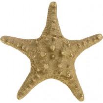INART Αστερίας χρυσό. 17X17X6cm. 4-70-594-0004