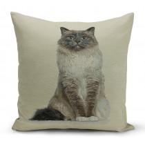 Mαξιλαροθήκη γάτα στόφα. 40x40cm. oikds56
