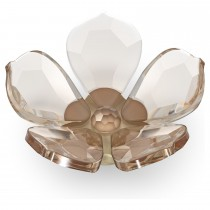 Swarovski κρυστάλλινο λουλούδι μαγνήτης 5580029 Garden Tales Magnolia Magnet, Small