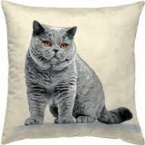 Μαξιλάρι  ταπισερί-στοφα - γάτα. 45x45cm. oikos512